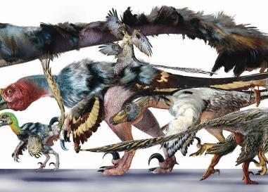 Raptor Family by Luis Rey