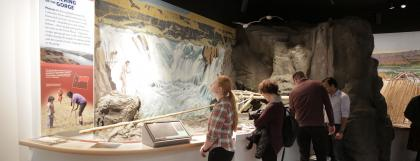 Guests viewing an exhibit at the University of Oregon Museum of Natural and Cultural history