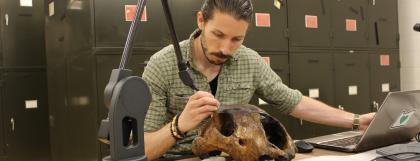 Paleontology student in a lab examining a giant sloth skull